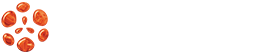 Visual Cargo Care